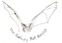 Galway Bat Group