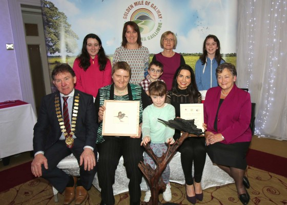 The overall Winner of the Golden Mile Awards 2015 held at the Claregalway hotel was Lisheenaheilta Golden Mile Group, Glenamaddy. In Picture: Front Row: Cllr. Peter Roche, Cathaoirleach Galway County Council, Mary Brosman, Kayla Comer, Colette Ganley and Ms. Delia, CEO, Colahan ,Galway Rural Development. Back Row: Emma Comer, Mary Jo Comer, Jack Ganley, Teresa Comer and Mica Comer.