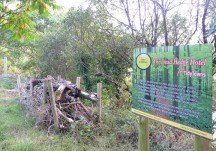 Action Plan for Nature for Milltown 2011-2014