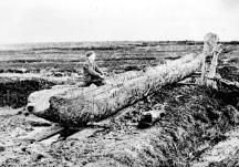 The Lurgan Canoe