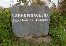 Carrownageeha