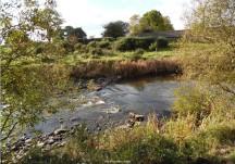 Clare River Walk and Milltown Slí na Sláinte
