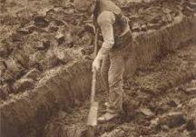 'A Day in the Bog - La sa bPortach'