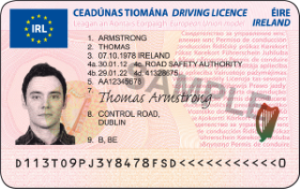 Do my term paper uk driving licence still valid