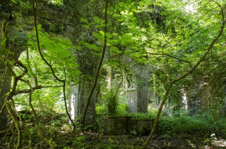 Four arches of mill at Woodlawn House | Frank Nevin