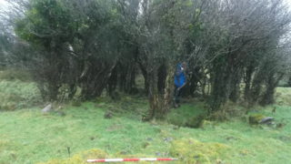 Copse of trees around Killaan Holy Well. Christy Cunniffe in blue coat | B. Doherty 2016