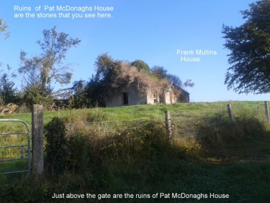 Ruins of McDonagh homestead