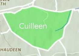 Cuilleen Townland