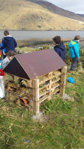 Bug Hotel made by the students of Leenaun National School | Elaine O'Riordan