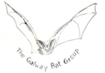 Galway Bat Group