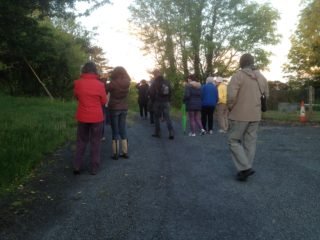 Dawn Chorus at Greenfields | Headford Environment Group