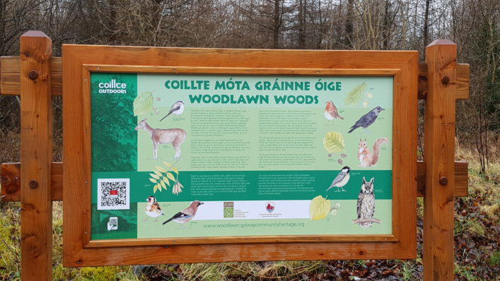 Nature of the woods sign at Woolawn | Catherine Seale