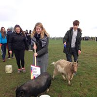 Seamount students try their hand at pig steering | BNS