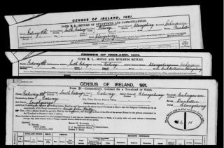 Census of Ireland, 1910 - Form N, B1 & B2 | National Archives of Ireland (NAI) CC BY