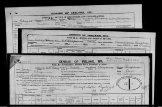 Census of Ireland, 1911 - Form N, B1 & B2 | National Archives of Ireland (NAI) CC BY-ND