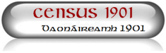 Census 1901 Icon