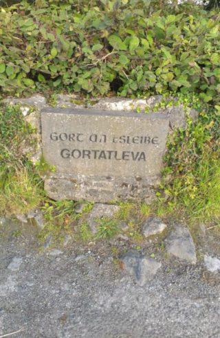 Gortatleva Name Stone, 1996   Josette Farrell, Claregalway.info