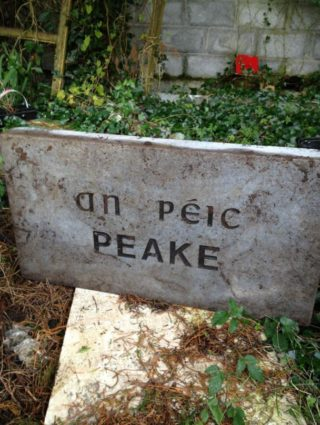 Peake Name Stone, 1996 | places.galwaylibrary.ie/maps