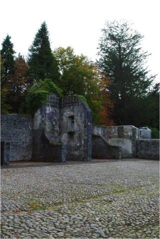 Coole dovecote   Christy Cunniffe