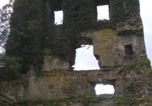 Ballydonnelan castle