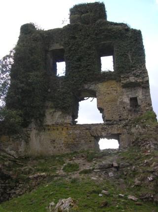 Ballydonnelan castle | Christy Cunniffe