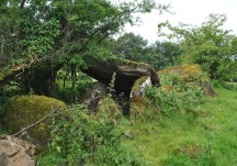 Wedge Tomb - Marblehill