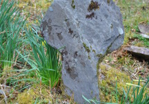 Salrock cross slab