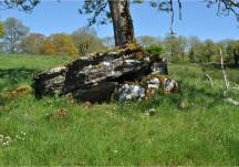 Portal tomb Marblehill