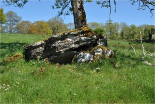 Collapsed Portal Tomb in Marblehill | Christy Cunniffe