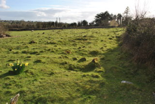 A linear earthwork likely covering a long famine related burial pit.   Christy Cunniffe