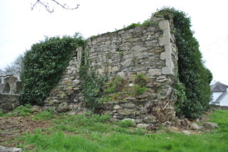 East gable and part of north wall of Leitrim medieval church. | Christy Cunniffe