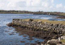 Ballynamanagh East