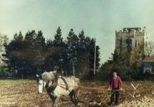 Plowing with Horses C.1973