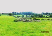 Ardawarry - Ringfort