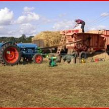 The day of the Threshing | Joe Mannion, USA, article entitled The Thresher Out and About Magazine 2015