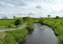 Our local River Clare