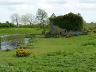 View of mill from Russelstown | Milltown Heritage Group