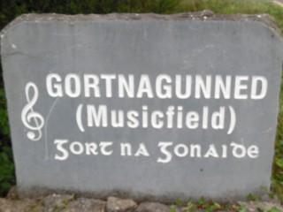 Gortnagunned Townland Stone | Milltown Heritage Group