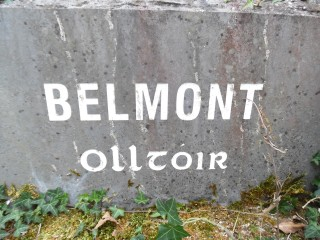 Belmont Townland Stone | Milltown Heritage Group