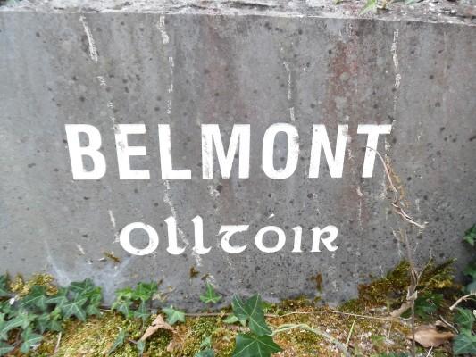 Belmont Lake