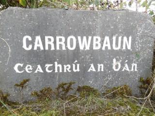 Carrowbaun Townland Stone | Milltown Heritage Group