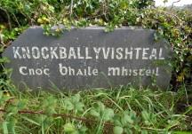 Knockballyvishteal Monuments
