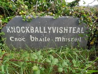 Knockballyvishteal Townland Stone | Milltown Heritage Group