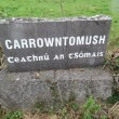 Carrowntomush Monuments