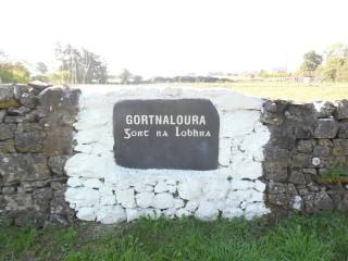 Gortnaloura Townland Stone | Milltown Heritage Group