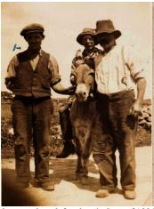 John McGrath with his father William McGrath (on the donkey), and John Larkin, Cloonagh. June 1936 | Ray McGrath