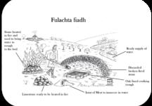 08 Fulachta Fiadh