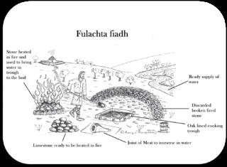 Fulachta fiadh | Drawing by Rory O'Shaughnessy