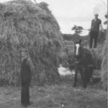 Jimmy Madden (on horse), John Connolly (on haystack), Dan Madden (standing) c1970s | Photo Credit Margaret Connolly Hackett