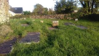 Graves at Sean Reilig, The Farm | Photo Credit:  Hazel Morrison